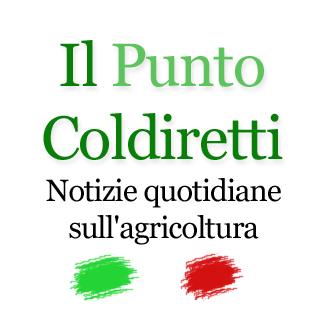 punto coldiretti logo