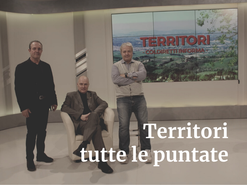 Territori tutte le puntate