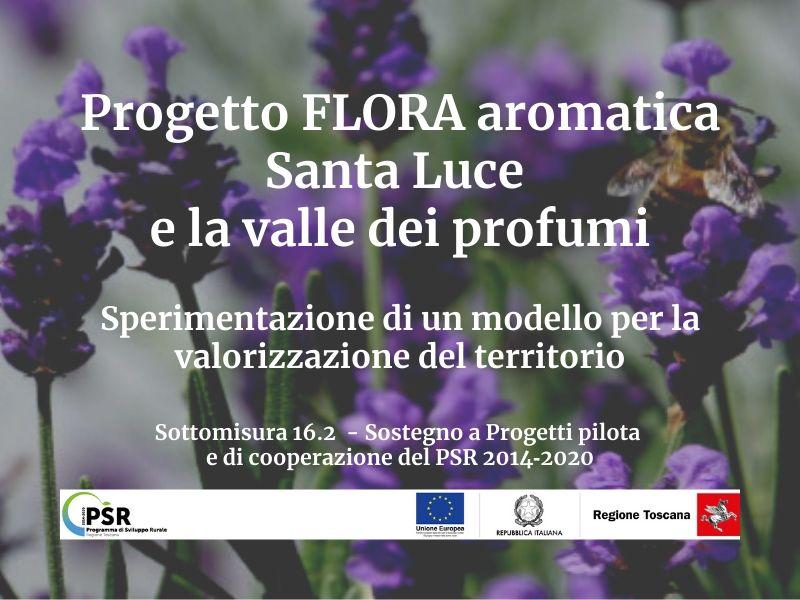 PIF flora aromatica